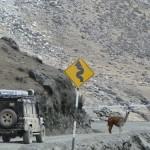 Expedições off-road 2014