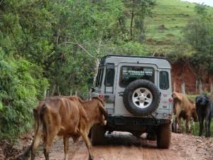 Cunha - Parque Nacional - São José do Barreiro