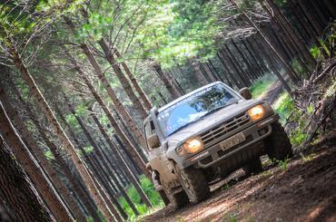 O percurso terá cerca de 250km e passará por plantações de pinus e eucaliptos  - Foto:  Doni Castilho/DFOTOS