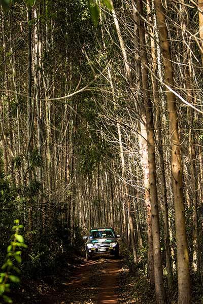Belas paisagens marcaram a prova de rali de regularidade - Foto:  Ricardo Leizer / Mitsubishi