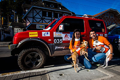 Cachorros marcam presença (Foto: Wladimir Togumi)